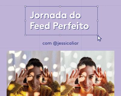 Curso Completo: Jornada do Feed Perfeito